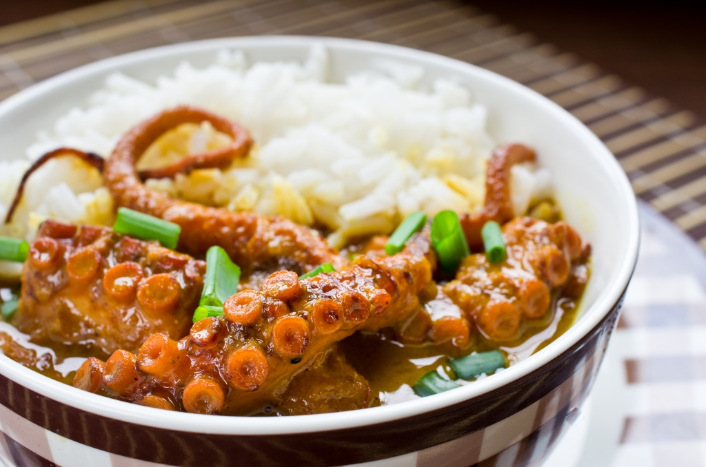 octopus curry.jpg