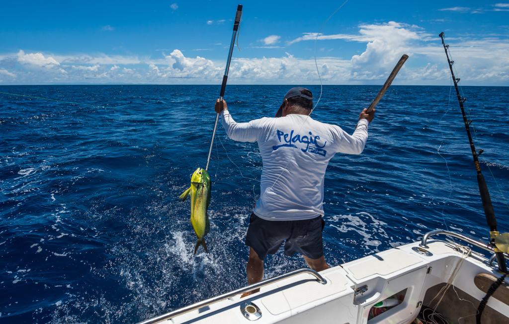 Seychelles fishing