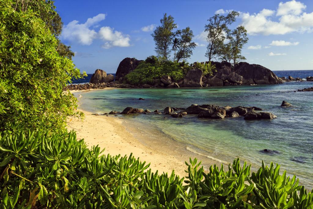 Seychelles nature